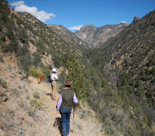 Gila, NM: Hiking trails abound...