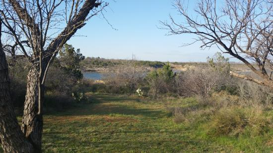 Colorado City, TX: View from our Cabin