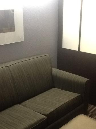 Microtel Inn & Suites by Wyndham Brooksville: Sofa bed in living/dining area