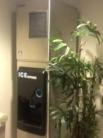 Microtel Inn & Suites by Wyndham Brooksville: The ice machine is tastefully tucked away