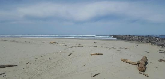 Tillamook, OR: Was a long trip to the end rode the bikes and walked bayocean road bay side.  8.86 miles.  Great