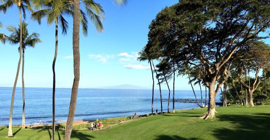 Wailea Elua Village: Condo #1302, views from our lanai and the property near by.