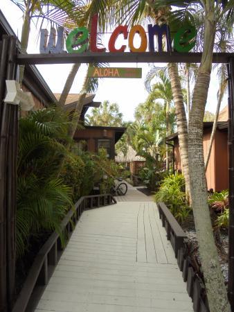 Kona Kai Motel: Entrance from parking lot.