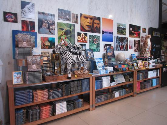 Book store and gift shop - Picture of National Geographic Museum ...