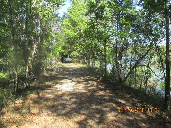 Brooksville, Floride : Trail