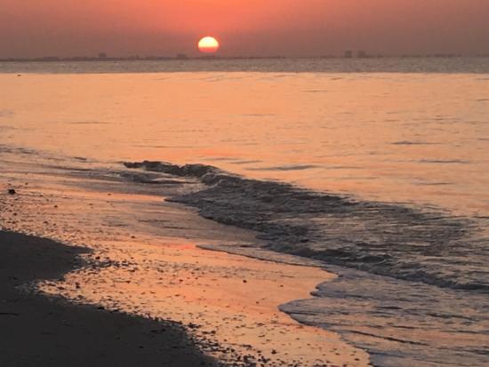 Ocean's Reach Condominiums: photo3.jpg