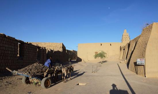 Timbuktu, Mali: Photo of a local outside the Djinguereber mosque