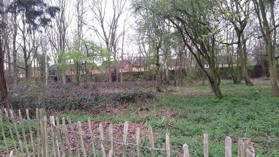 Overstone, UK: photo1.jpg
