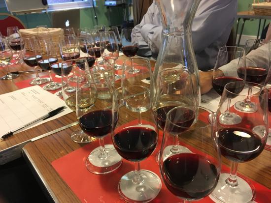Surrey Wine School: On your marks, get set...