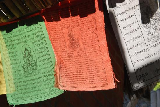 La Loma Linda: Bungalows, Yoga and Feldenkrais: Richtung Yogaraum