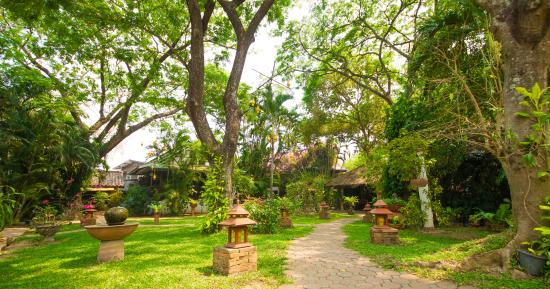 Secret Garden Chiang Mai: Main Garden view