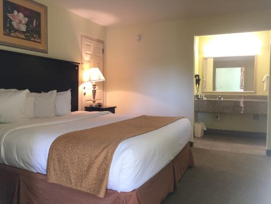 typical but dated room picture of quality inn suites statesboro rh tripadvisor com