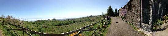 Puntalazzo, Italy: Posto incantevole immerso nella natura