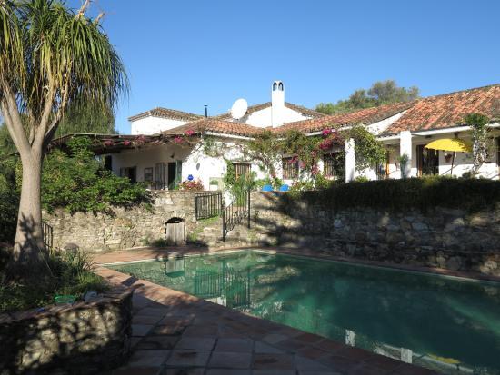 El Diplomatico Feo : La maison et sa piscine