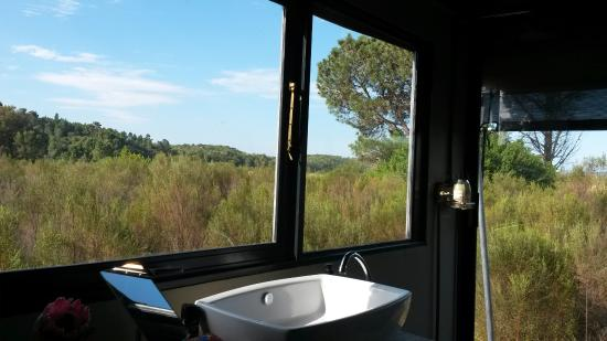 Reflections Eco Reserve: Bathroom was superb...in the bush
