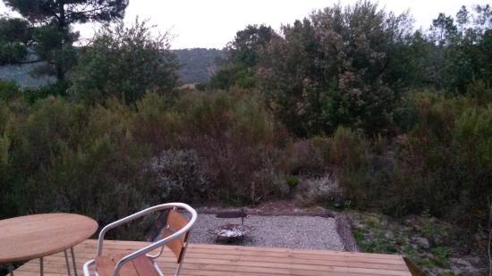 Reflections Eco Reserve: Braai area in between bush in front of tent