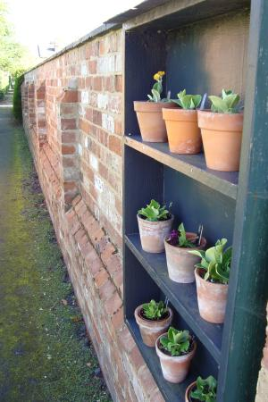 Hill Close Gardens: Pots and Path
