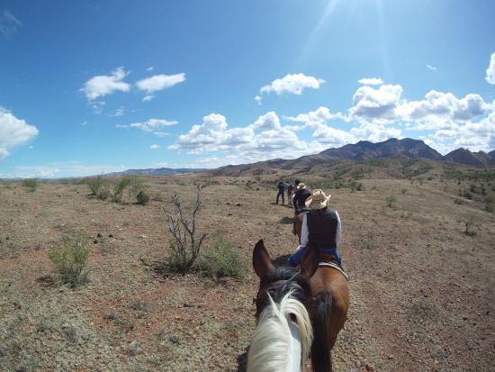 Circle Z Ranch : On a Circle Z Trail in Southern AZ
