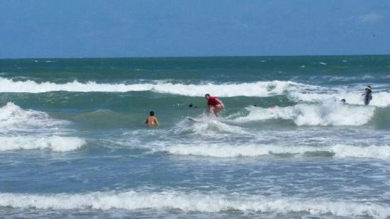Nex Generation Surfing School: 20160411_140914_large.jpg