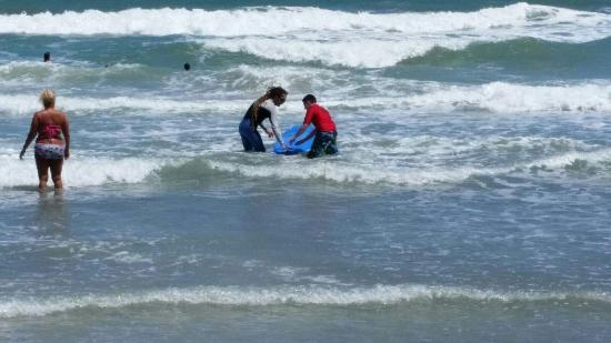 Nex Generation Surfing School: 20160411_135826_large.jpg