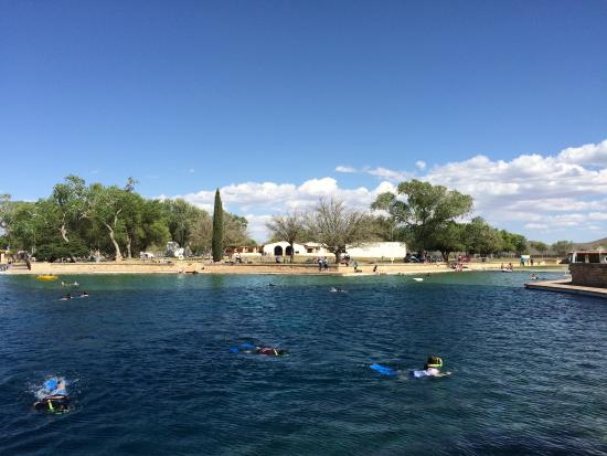 Toyahvale, TX: Spring Pool
