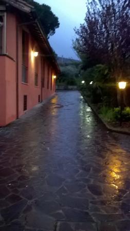 Parco degli Ulivi : vialetto entrata notturna invernale