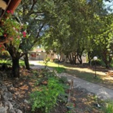 Eilon, Israel: garden