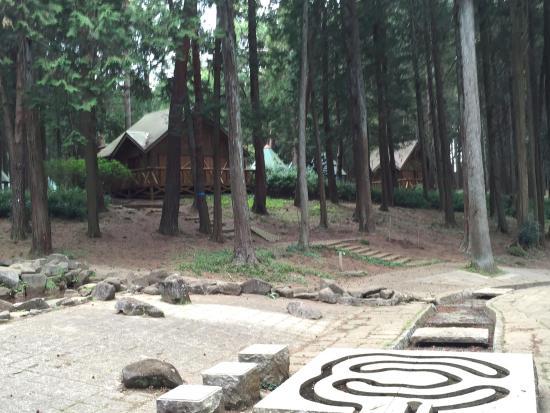 Ryugasaki Forest Park: photo1.jpg