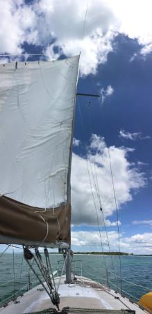 Anna Maria Sailing Adventures: Absolutely beautiful adventure
