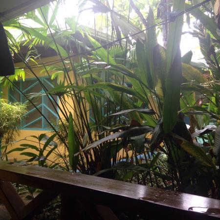 Hotel Guarana: photo2.jpg