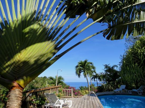 La Koumbala: La piscine !