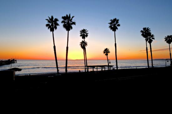 steps away from San Clemente Wine Company