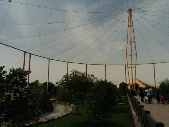 الخور, قطر: inside park...