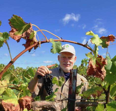 Potosi, MO: Grape Friends at Harvest