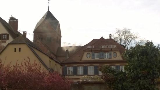 Herrenstein
