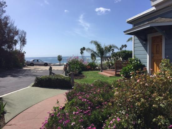 Edgewater Beach Motel: The ocean view from right outside of room 116