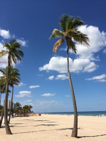 The Pillars Hotel Fort Lauderdale: photo0.jpg