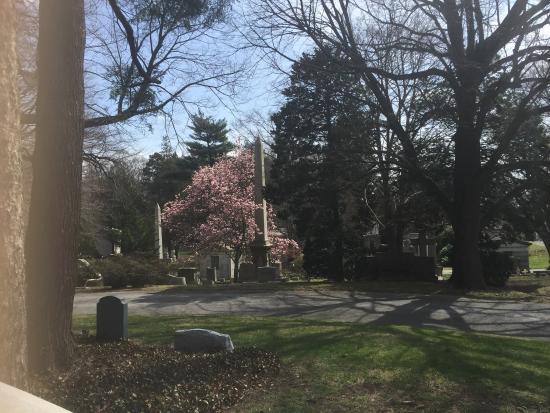 Woodlawn Cemetery: photo2.jpg