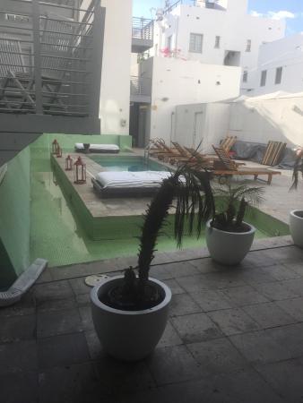 Clinton Hotel South Beach: photo1.jpg