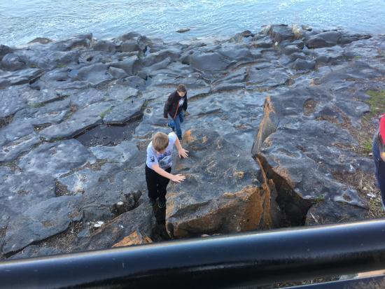 Snake River Greenbelt: Kids Climbing near Idaho Falls Green Belt