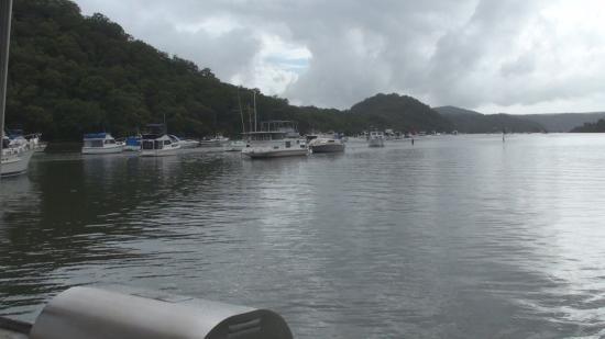 holidays afloat ripples picture of new south wales australia rh tripadvisor com
