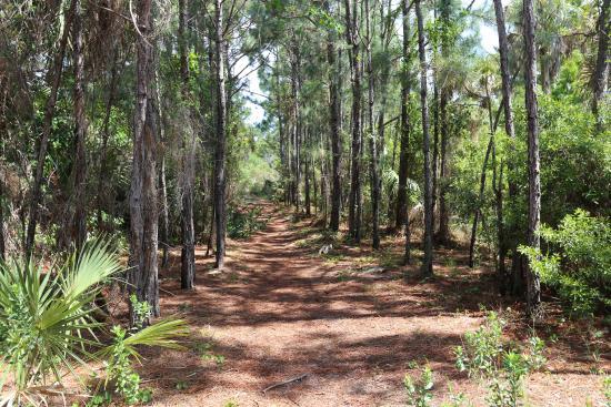 Port Saint Lucie, Flórida: Nature Trail