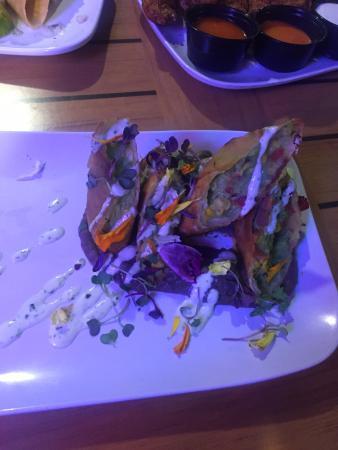 guacamole spring rolls picture of the siesta key oyster bar rh tripadvisor ie