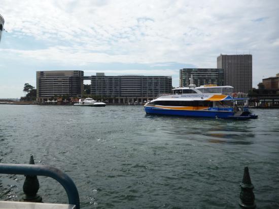 manly fast cat picture of sydney ferries sydney tripadvisor rh tripadvisor ie