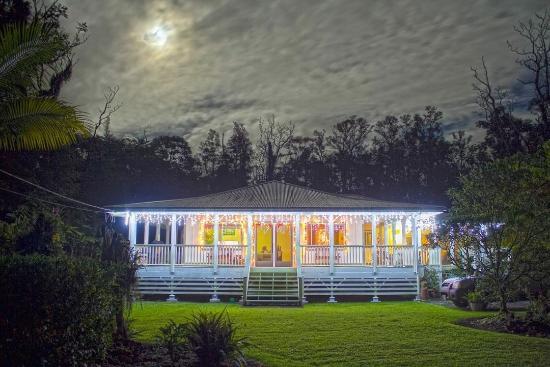 The Ohia House: Christmas at Ohia House