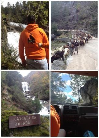 Le pays des chèvres et des cascades ... mais pas que :)