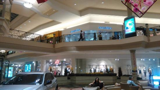 This is my first visit to the mall at Wellington green and I must say it has a large variety of stores -- The reason for my visit however I wanted to look for the Godiva chocolatier chocolate store- and I had a craving for some softserve ice cream in a waffle cone/5(65).
