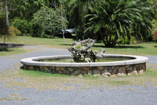 Sweeny's St. Croix Safari Tours: Fountain in the gardens