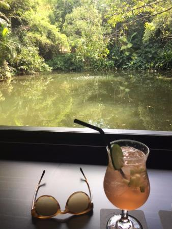 Yandina, Australia: Book at the bar to get this view