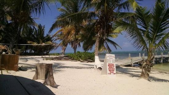 Ambergris Divers Resort: Looking from bar onto the beach